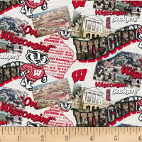 NCAA Wisconsin Badgers Scenic Map Cotton Multi