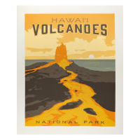 "Riley Blake National Parks Volcanoes 36"" Panel Multi"