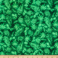Tropical Zone Leaf Texture Green