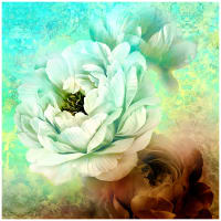 "Royal Beauty Peonies 60"" Panel Green/Gold"