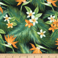 Kaufman Island Paradise Tropical Flowers Black