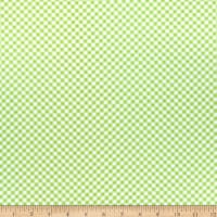 Wilmington Adventure Time Gingham Green