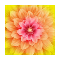 "Hoffman Digital Dream Big 43"" Floral Panel Daisy"