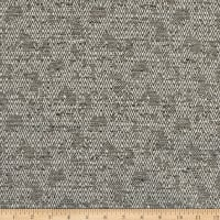 Richloom Fortress Clear Aerys Woven Mica