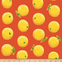 Kaffe Fassett Collective Oranges Yellow