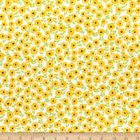 Andover Sunny Bee Daisies White