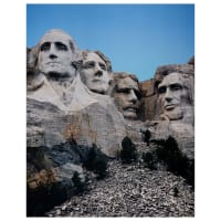 """Whistler Studios One Of A Kind Mount Rushmore 35"""" Panel Multi"""