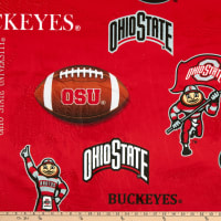 NCAA Ohio State Buckeyes Tossed Logo Map Minky