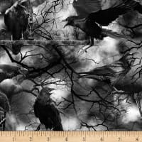 Timeless Treasures Wicked Fog Spooky Crows Black