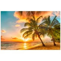 """Northcott The View From Here Paradise 28"""" Panel Island Sunset"""