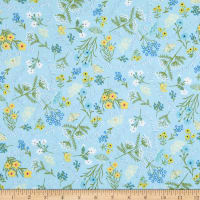 Windham Fabrics Meadow Whispers Whisper Dawn Blue