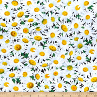Timeless Treasures Spring Beauty Packed Daisies White