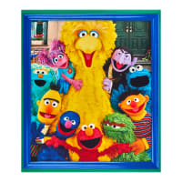 "EXCLUSIVE Sesame Street Character 36"" Panel Multi"