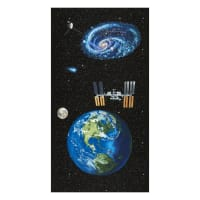 """Planetary Missions Earth 24"""" Panel Multi"""