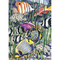 "Mini Color Pencil By Number Kit 5""X7""-Tropical Fish"