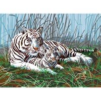 """Junior Large Paint By Number Kit 15.25""""X11.25""""-White Tigers In The Mist"""