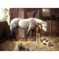 """Paint By Number Kit 15.375""""X11.25""""-New Friends"""