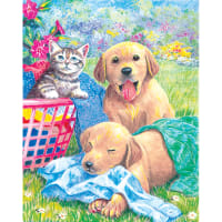"""Color Pencil By Number Kit 8.75""""X11.75""""-Wash Day Fun"""