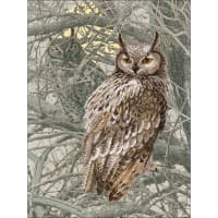 """RIOLIS Stamped Cross Stitch Kit 11.75""""X15.75""""-Eagle Owl (14 Count)"""