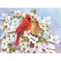 """Color Pencil By Number Kit 8.75""""X11.75""""-Cardinals"""