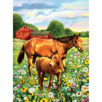 """Junior Small Paint By Number Kit 8.75""""X11.75""""-Horse In Field"""