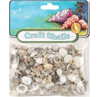 Craft Shells 150/Pkg-Natural
