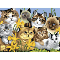 """Junior Large Paint By Number Kit 15.25""""X11.25""""-Cats Montage"""