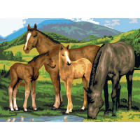 """Junior Large Paint By Number Kit 15.25""""X11.25""""-Horse & Foals"""