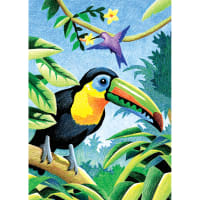 "Mini Color Pencil By Number Kit 5""X7""-Tropical Birds"