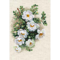 """RIOLIS Counted Cross Stitch Kit 8.25""""X11.75""""-White Briar (14 Count)"""