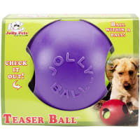"Teaser Ball 4.5""-Purple"