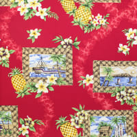 Trans-Pacific Textiles Day in Hawaii Lauhala Frame Red
