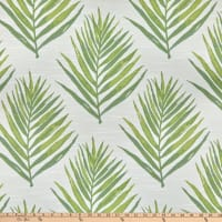 Bella Dura Home Performance Outdoor Royal Palm Lime