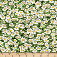 Timeless Treasures Peaceful Garden Packed Daisies Multi