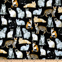 Timeless Treasures Cats & Dogs Assorted Realistic Cats Black