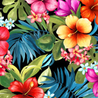 Michael Miller Fabrics Lost In Paradise Tropical Bliss Black