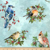 Hoffman Digital Winter Wonder Cardinals Aqua