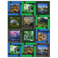 "QT Fabrics Digital Artworks XVII Dinosaur 46""x62"" Quilt Kit Multi"