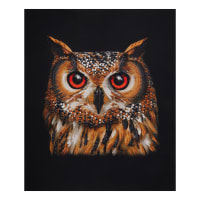 "Riley Blake It's A Crayola World Owl 36"" Panel Brown/Black"