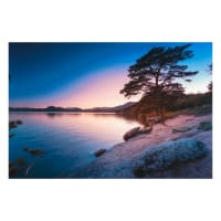 """Northcott The View From Here 2 Glass Lake 28"""" Panel Violet Multi"""