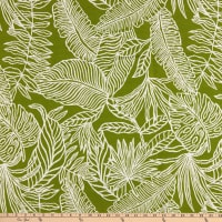 Terrasol Phoenix Palm Outdoor Woven Green
