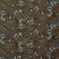 Fabtrends Dty Paisley Clay Lime