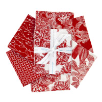 Riley Blake Castkata Classic Fat Quarter Bundle Red 6 Pcs