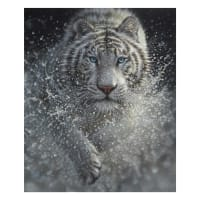 "Riley Blake On Safari White Tiger Poster  36"" Panel Grey/White"