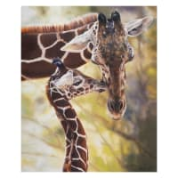 "Riley Blake On Safari Giraffes Poster 36"" Panel Brown/Green"