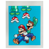 "Nintendo Super Mario Mario Bros Jump 36"" Panel Multi"