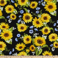 Kanvas Sunflower Sunrise Sunflower Garden Black