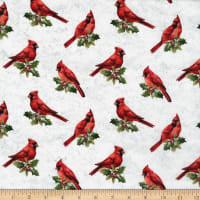 Northcott The Cardinal's Visit Cardinals Off White Multi