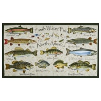 """Blank Quilting Keep it Reel Descriptive Fish 24"""" Panel Ivory"""