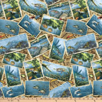 Blank Quilting Keep it Reel Fish Postcards Blue